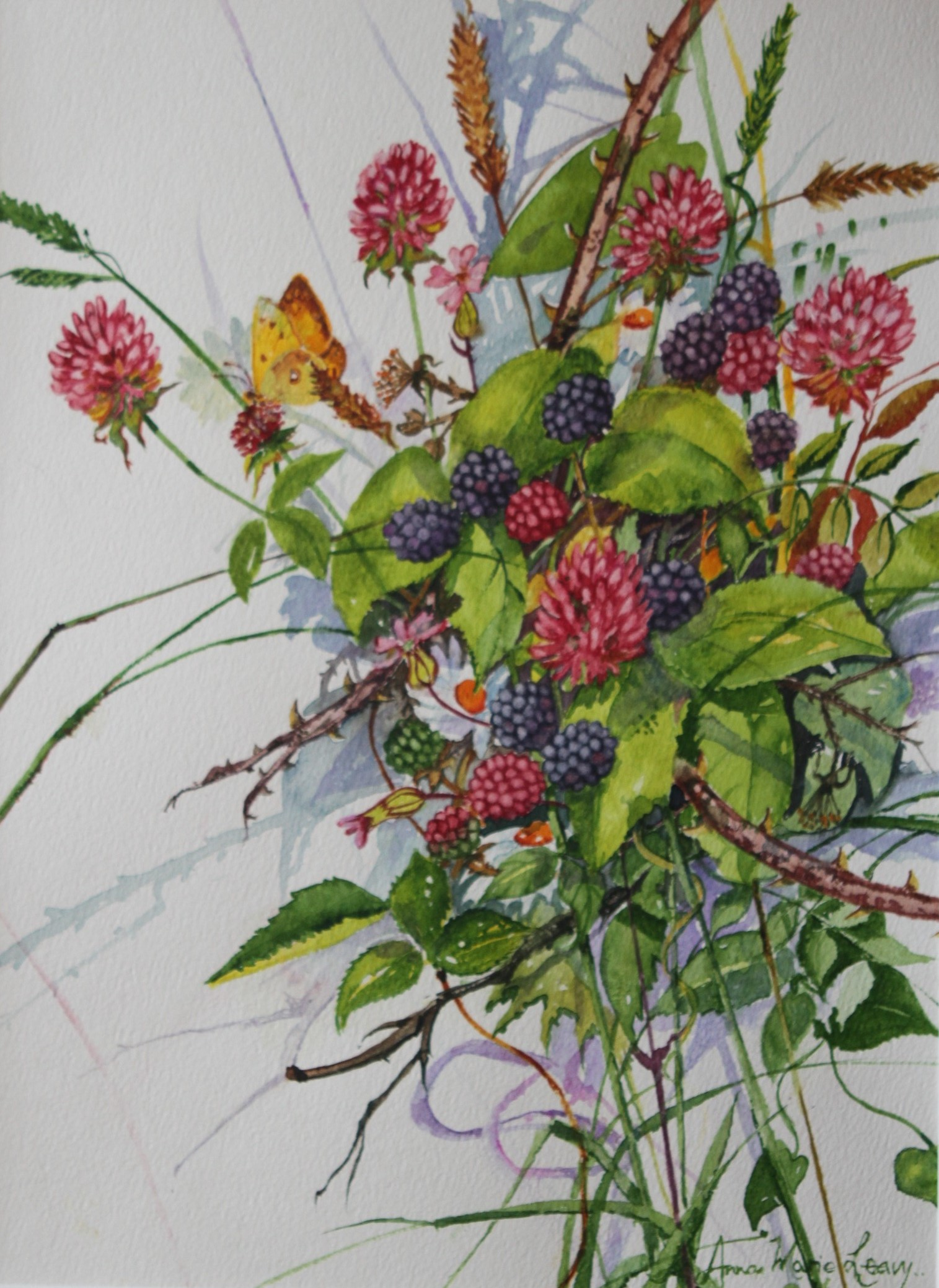 Blackberries in the Hedgerow, Watercolour by Anna Marie Leavy
